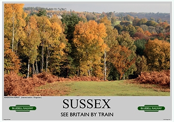Heritage Rail Poster - Sussex - Bluebell Railway